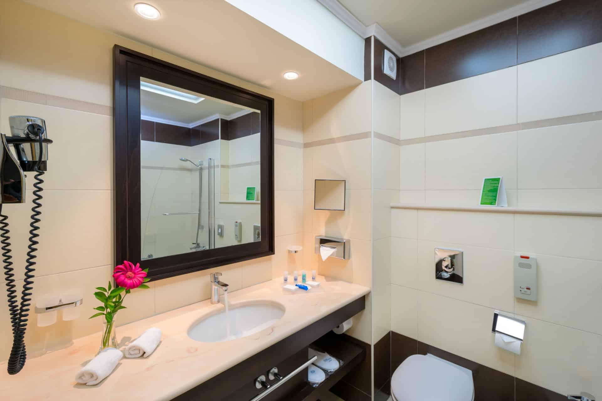 130_Bathroom_Deluxe_Guestroom_ELYSIUM