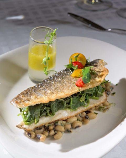 Fresh Mediterranean Restaurant Dish